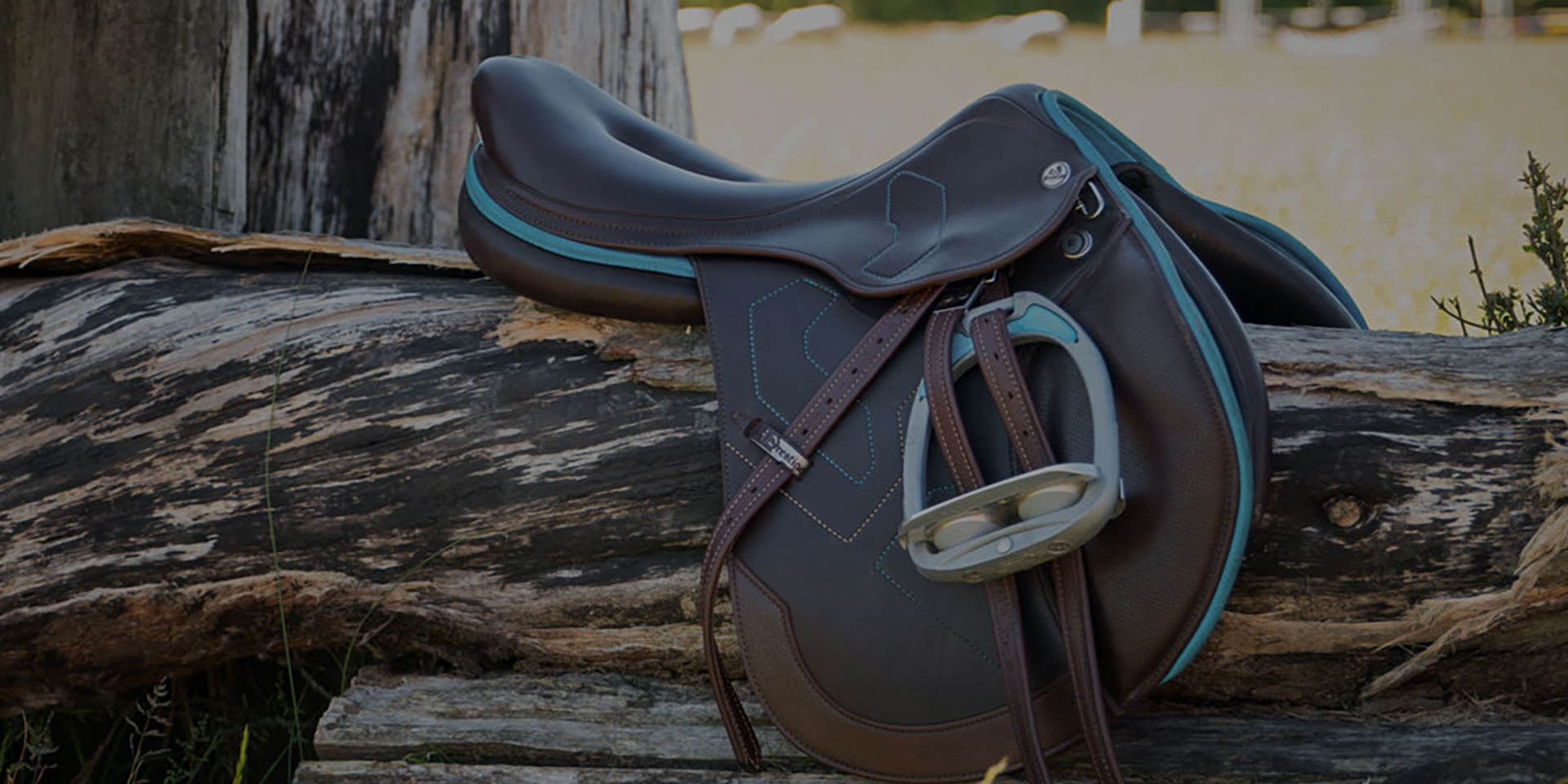 Saddle Josi | New Saddles & Saddle Fitting Services Auckland